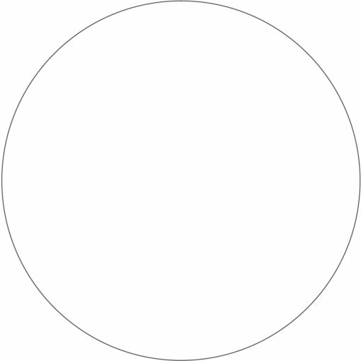 Medium Stik-Withit® Stock Die-Cut Medium Circle Notepad